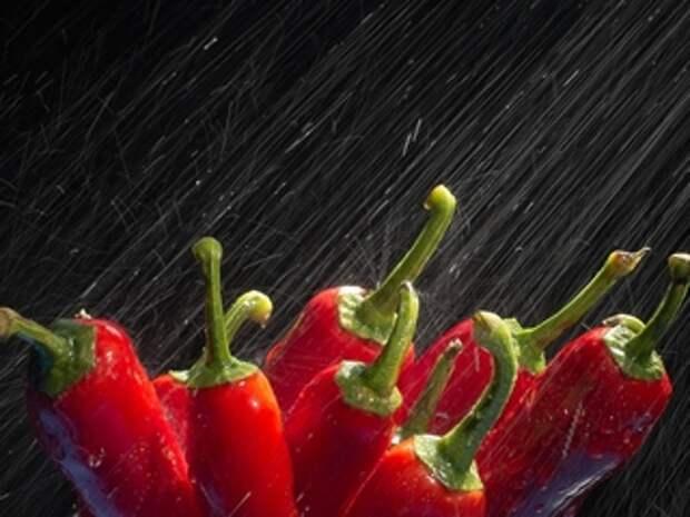 Консервированный болгарский перец рецепты на зиму