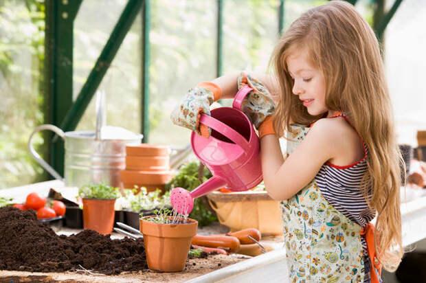 Хорошая идея - детский огород в контейнерах