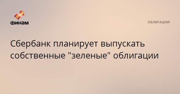 """Сбербанк планирует выпускать собственные """"зеленые"""" облигации"""
