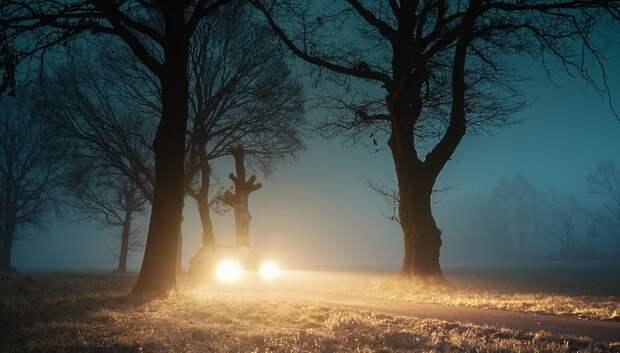 Видимость в регионе в ночь на 12 октября ухудшится до 500 м из‑за тумана