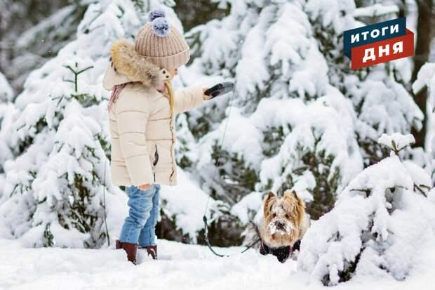 Итоги дня: запрет на выгул собак на детских площадках в Ижевске и поиски тракториста, «воровавшего» снег