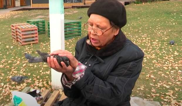 Спасительница пернатых: жительница Ижевска помогает пострадавшим от рук человека голубям
