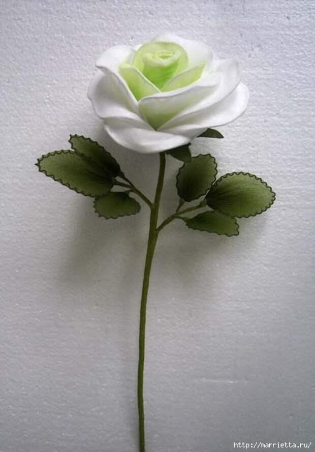 Розы из капрона. Красивые идеи и мастер-класс (56) (488x700, 179Kb)