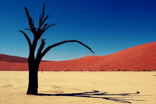 Пустыня Намиб в Намибии природа, пустыня