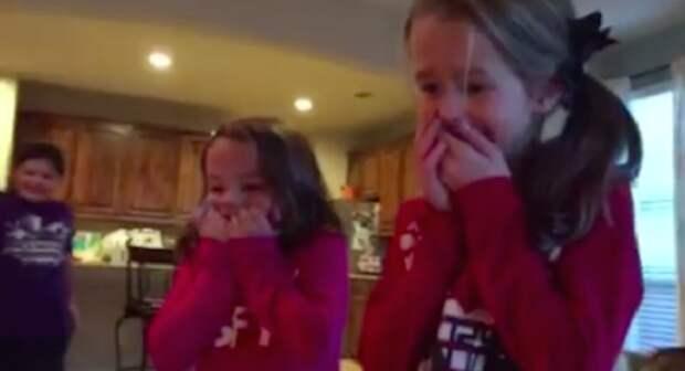 Когда эти малышки заглянули под елочку, то были на седьмом небе от счастья!