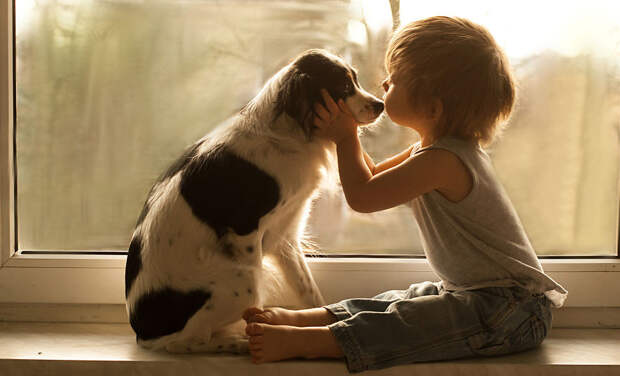 Когда вы найдете настоящую дружбу, вы найдете настоящую любовь  дети, животные, фотография