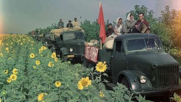 12 фотографий из архива журнала «Огонек», запечатлевшие тружеников СССР