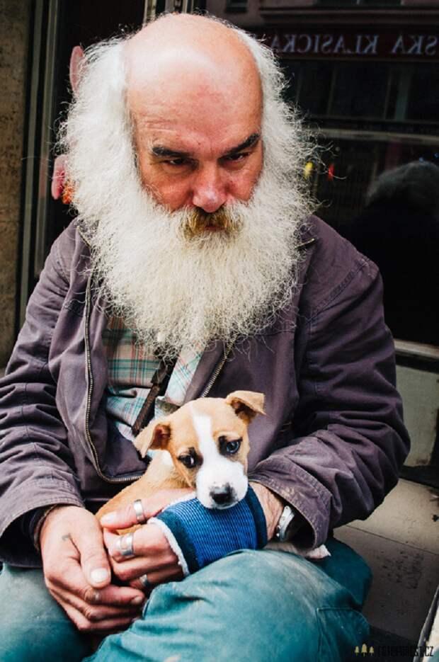 42. Бездомные из Брно бездомный, любовь, собака