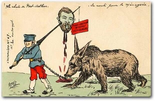 1905  медведь, россия