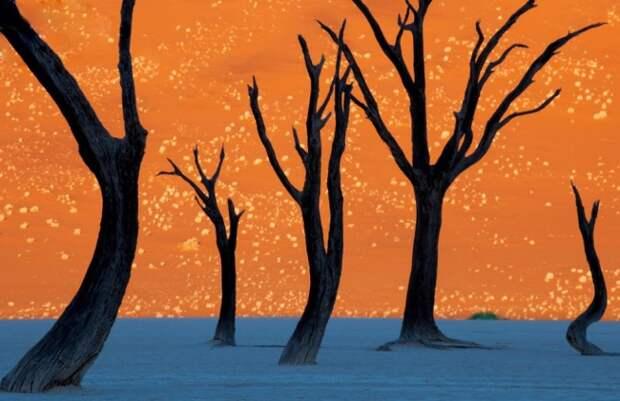 15 оптических иллюзий, созданных природой