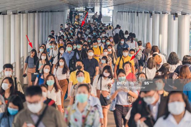 Crowd-Mask