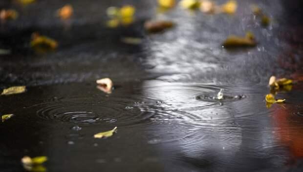 Дожди и до плюс 7 градусов ожидается в Подольске в четверг