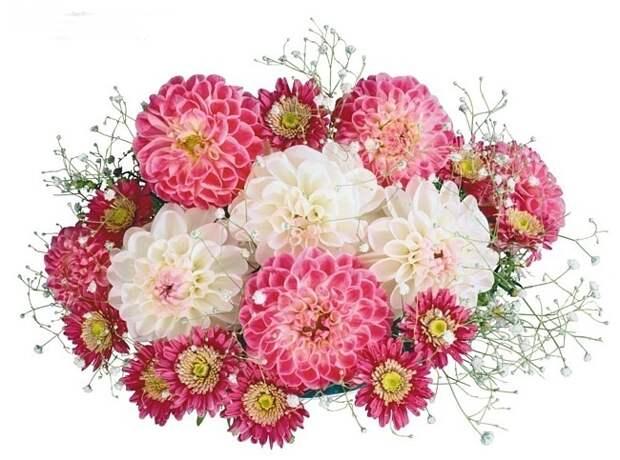 """Прекрасные букеты цветов """" Оформление детского сада, все для детского сада, родительский уголок, папки передвижки - SkyClipArt.r"""