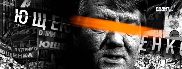 Чудеса эволюции: от человека-хомяка Ющенко к неистребимому Халку-Навальному