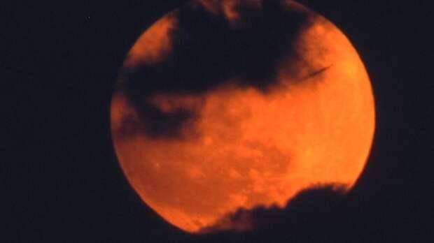 Ученые предположили, как изменилась бы жизнь на Земле при приближении Луны