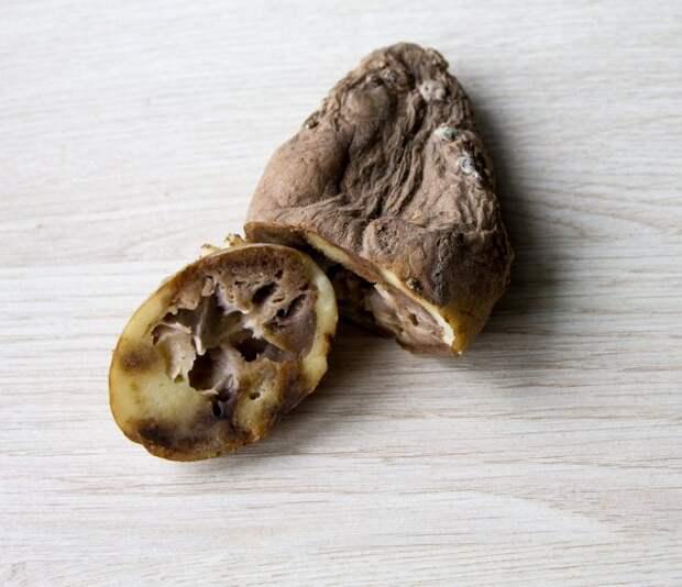 Как определить, что картошка уже созрела