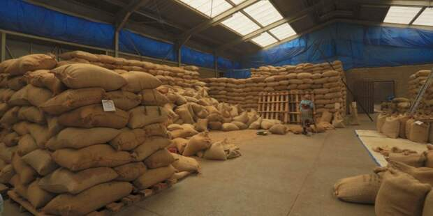 Китай отложил зерно в мешке