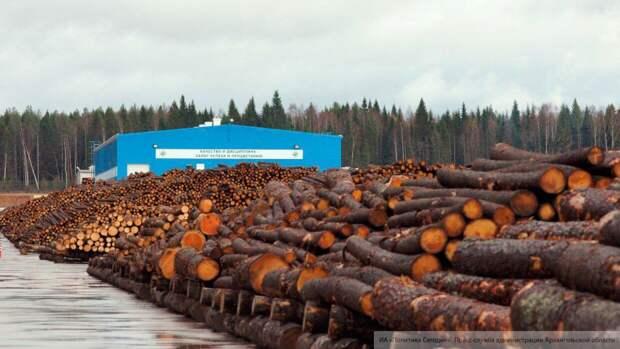 Власти Коми снизили на 25% плату за дрова для населения