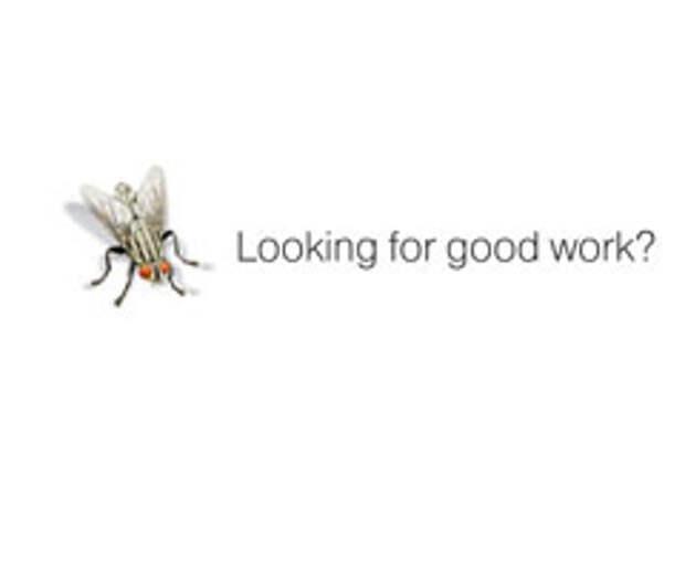 На что садятся мухи?
