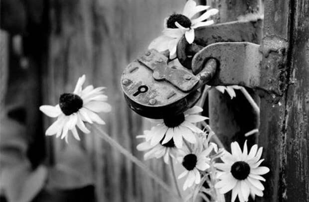 «Ушла любовь, а мне не верится…»: душевное стихотворение Андрея Дементьева об ушедшей любви