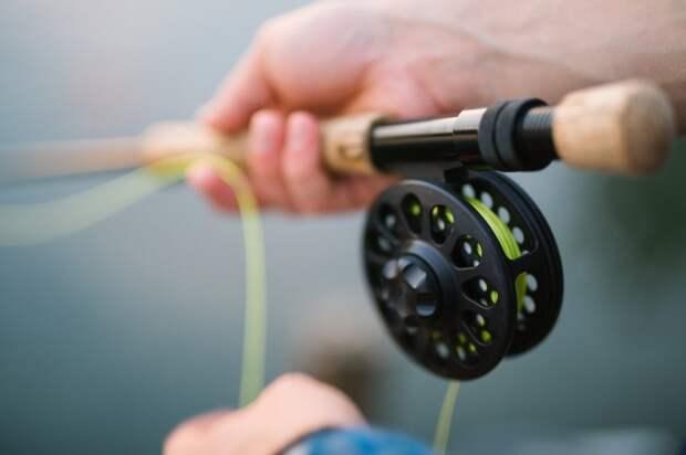 Соревнования по спортивной рыбалке пройдут в Бурцеве