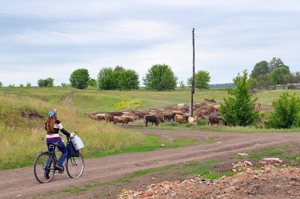 Как стать фермером деревня, жизнь загородом, своими руками, фермер, хозяйство