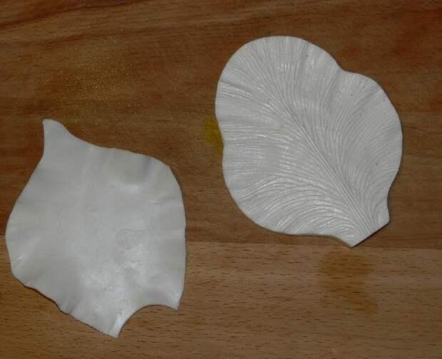 Лепесток каллы
