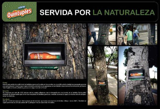Партизанская акция: деревья-автоматы
