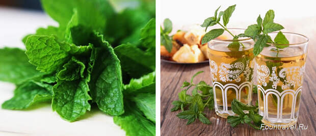 Зеленый мятный чай, Марокко