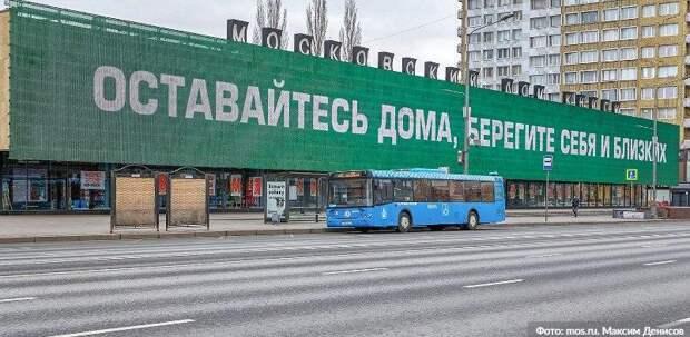 Собянин возобновил соцпомощь для пожилых на домашнем режиме. . Фото: М. Денисов mos.ru