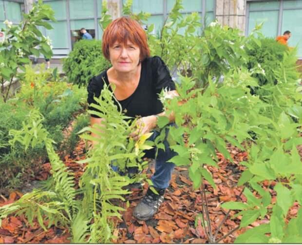 Специалист Ботанического сада рассказала, как на даче ухаживать за растениями