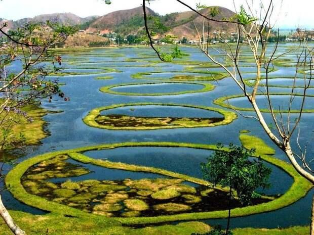 Пхумди — плавающие острова озера Локтак, Индия загадка, загадочные места, интересно, интересные места, мир, остров, природа