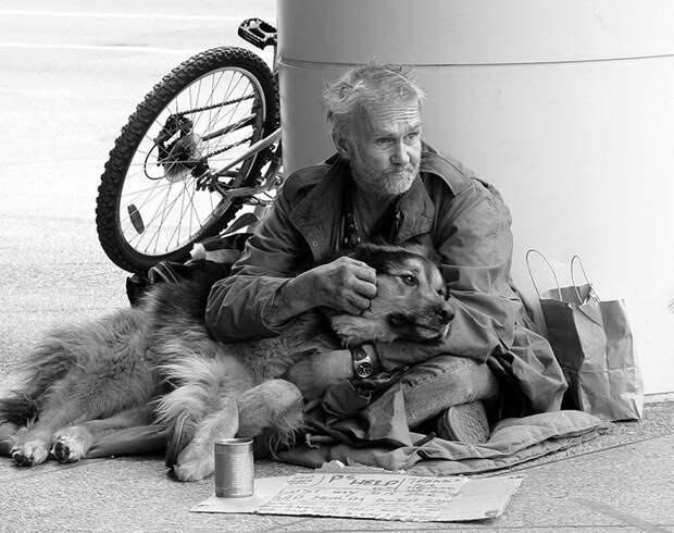 20. Лучшие друзья бездомный, любовь, собака
