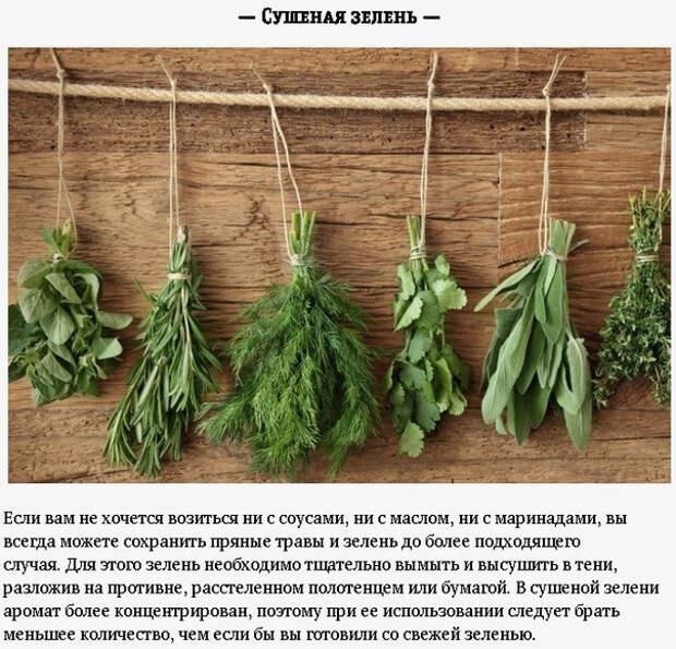Полезные способы использования остатков свежей зелени