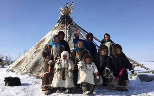 Коренные обитатели тундры в большинстве своём ведут традиционный образ жизни