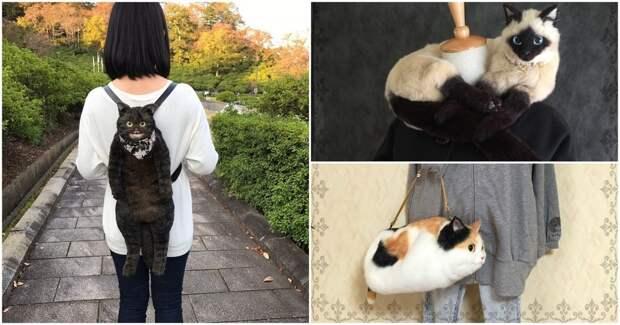 Котосумки: необычный японский тренд