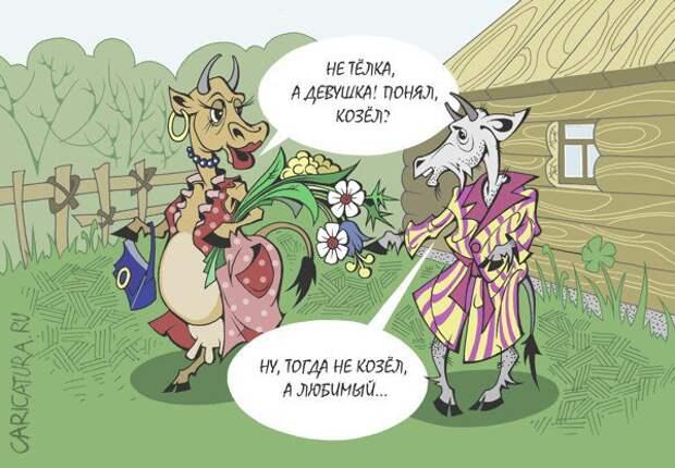 Анекдоты про Козу