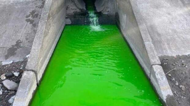 Реки Пермского края неожиданно позеленели