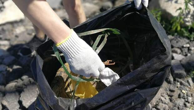 Тарифы на вывоз коммунальных отходов в Подмосковье не изменились