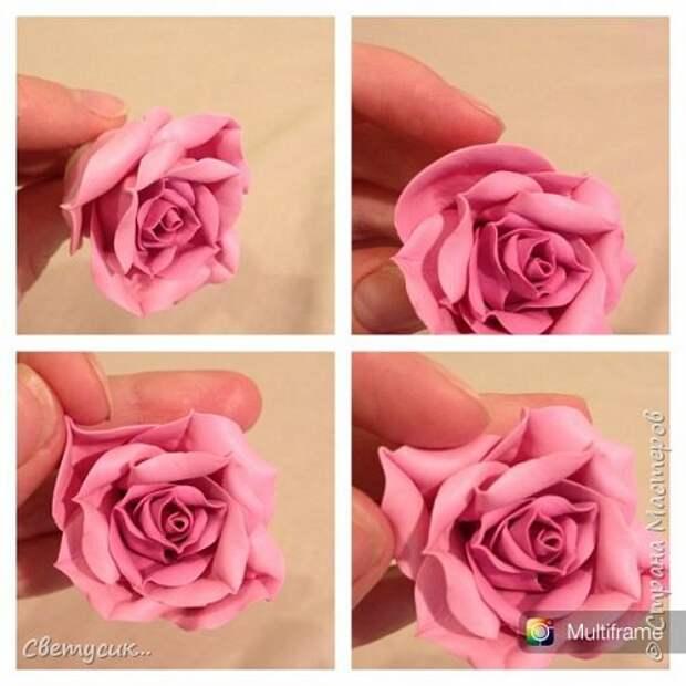 Мастер-класс Флористика искусственная Лепка МК розы из ХФ как и обещала Фарфор холодный фото 20