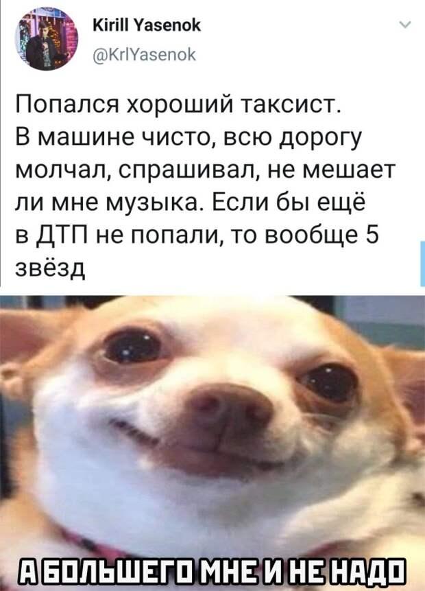 Подборка картинок. Вечерний выпуск (30 фото) - 19.10.2020