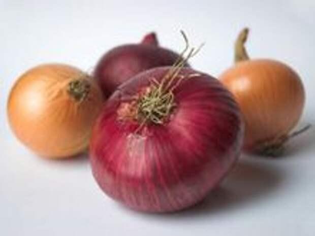 http://produkt-pitaniya.ru/images/kartinki/food/ovoshi/lukovica/luk-repchatyj-vybor-hranenie.jpg