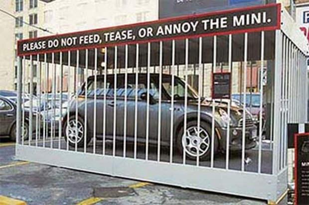 Nissan'ы вырвались на свободу