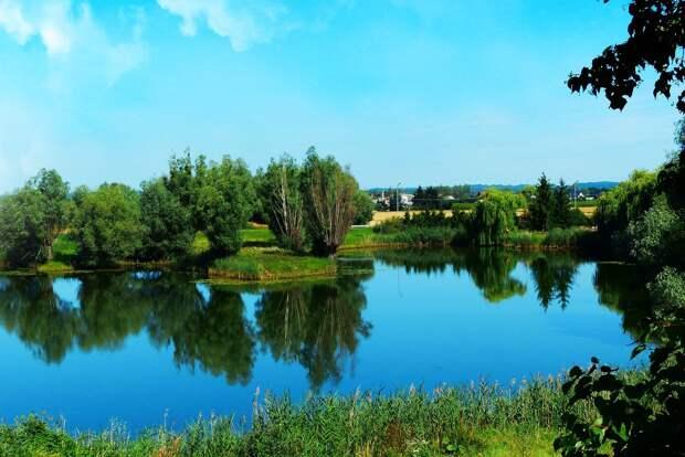 Пытавшийся переплыть деревенский пруд юноша утонул в Удмуртии