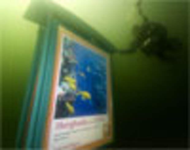 Реклама только для аквалангистов
