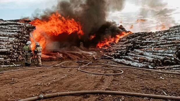 Более 9 часов пожарные боролись с огнем в Балезинском районе Удмуртии