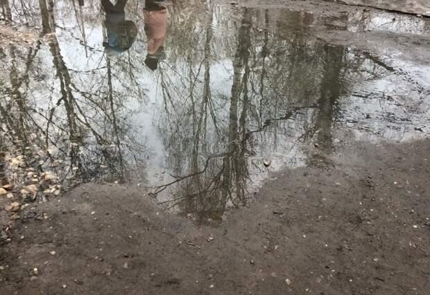 Канализационная река не пускает костромских детей в школу и садик