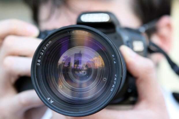 Поклонникам зеленых зон в Кузьминках предложили участие в фотопроекте Мосгорпарка