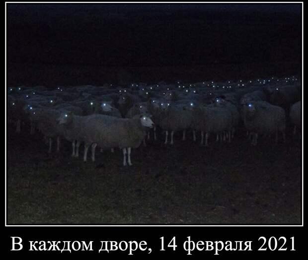 Россия будет свободной! Мы здесь власть!