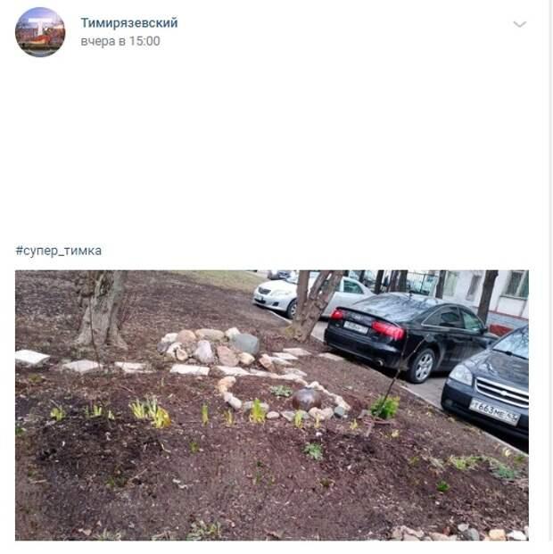 Фото дня: мини-субботник в Тимирязевском